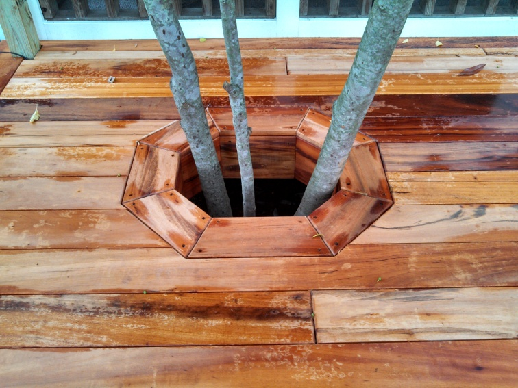charles-tigerwood-decking-around-tree